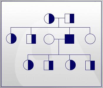 phenylketonuria is inherited