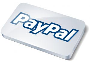 paypal system