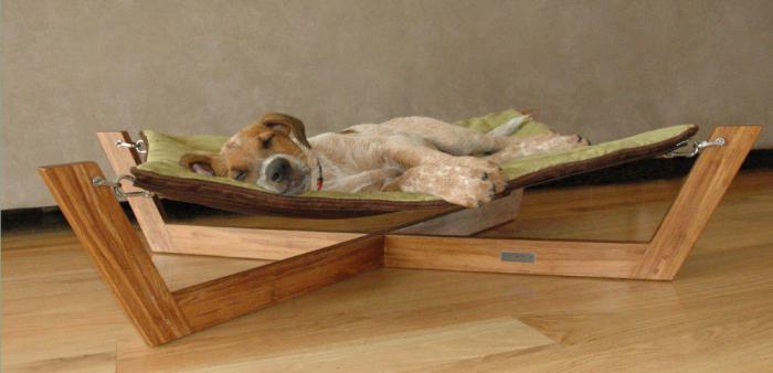 Сделать квартире место для собаки своими руками