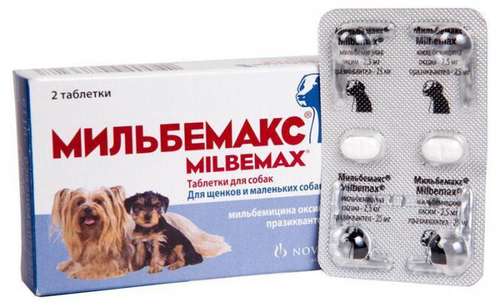 антибиотики от глистов отзывы