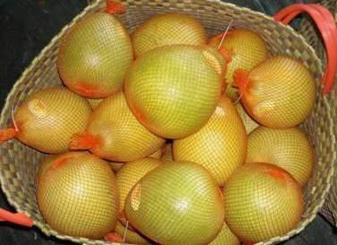 pomelo what kind of fruit