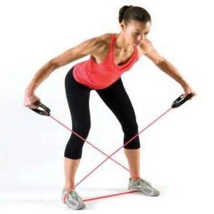 Isometric exercise system