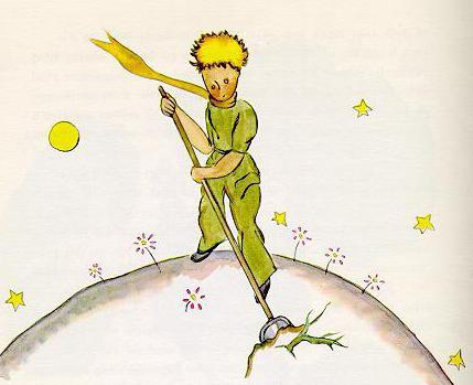 the little prince exupery
