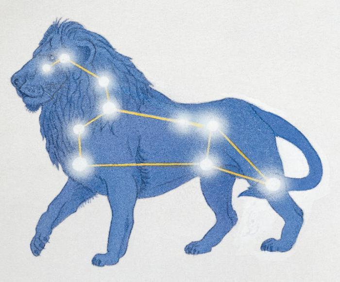 мужчина лев коза характеристика