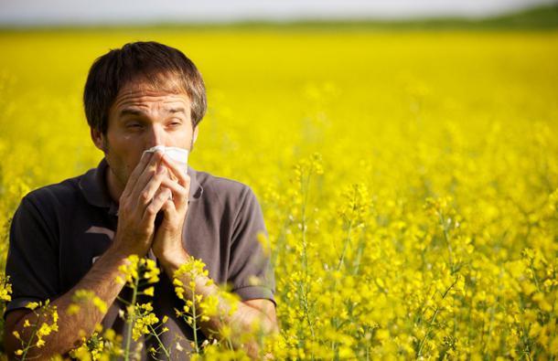 лекарства от аллергии капли
