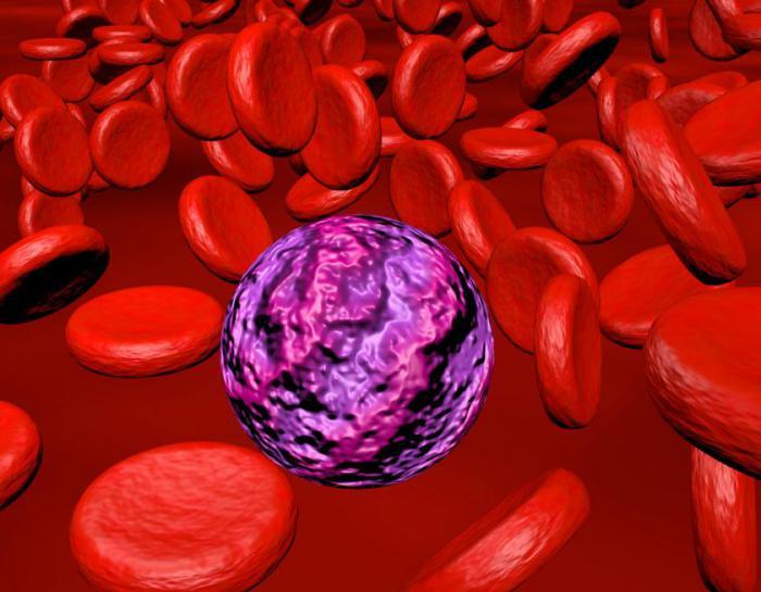 Лейкотаксин