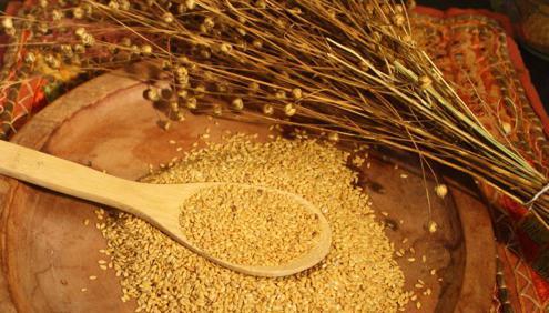 Лечебные свойства семян льна, применение и противопоказания