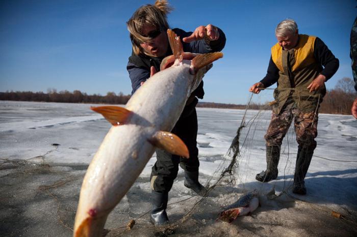 Озеро Плещеево: рыбалка и отдых :: SYL.ru