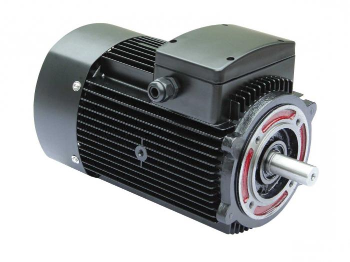 asynchronous electric motor