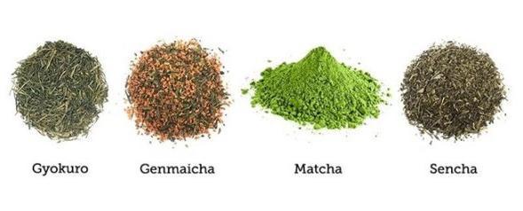 Как заваривать зеленый чай правильно: рекомендации