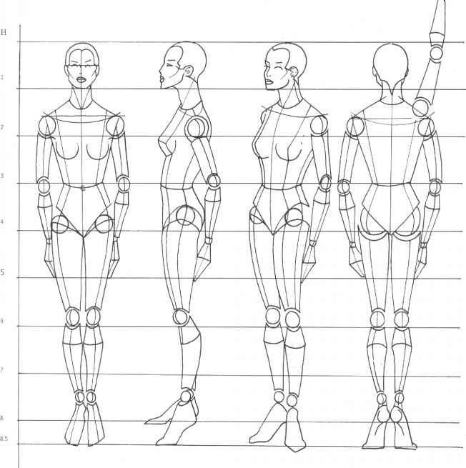 лицо и тело человека рисунок