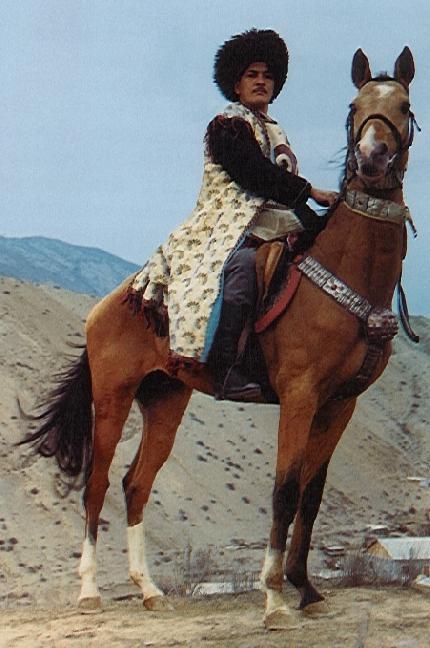 продажа лошадей ахалтекинской породы в россии