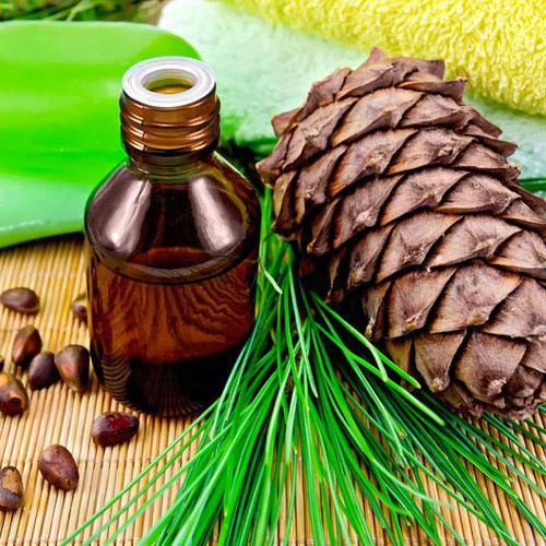 Кедровое масло: применение, полезные свойства