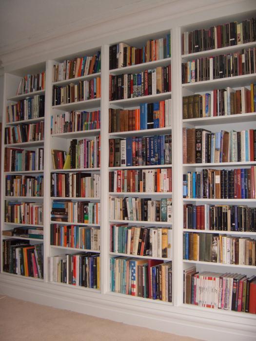 Книжные стеллажи, полки и шкафы (фото) :: syl.ru.