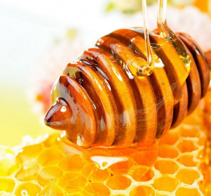к чему снятся пчелы и мед