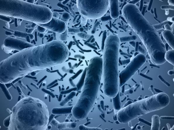 псевдомембранозный колит воспаление толстой кишки после антибиотиков