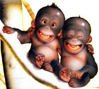 ребенок в год обезьяны