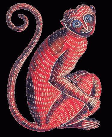 люди года обезьяны