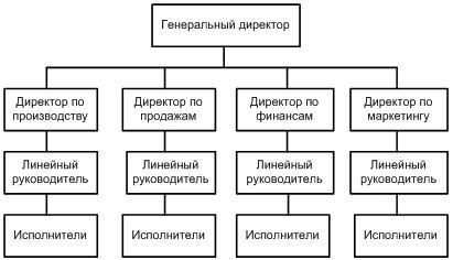 Линейно функциональная организационная структура схема фото 282