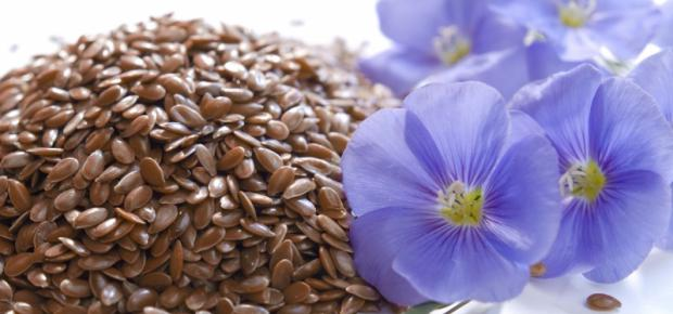where can I buy flaxseed