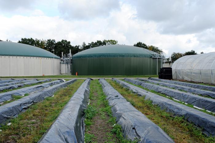 схема биогазовой установки своими руками