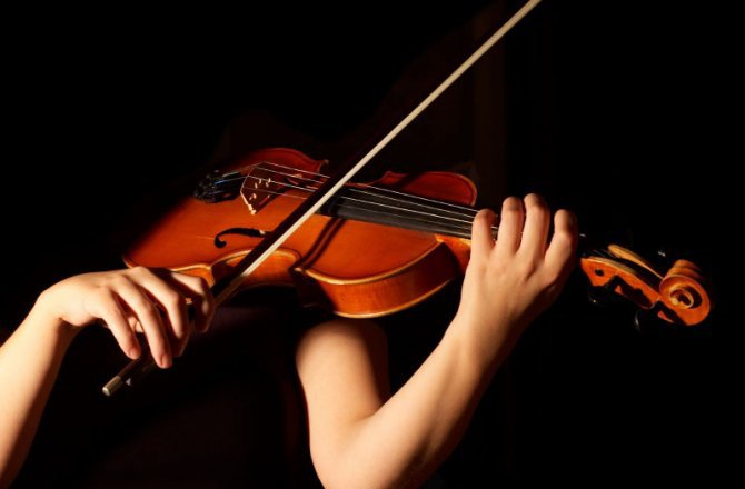 types of string instruments
