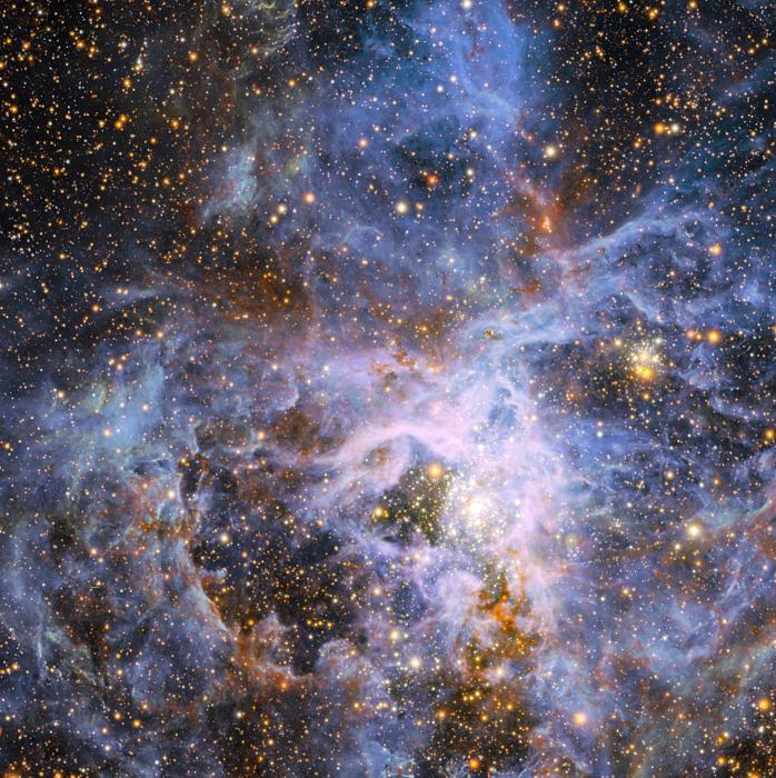 звездные созвездия названия