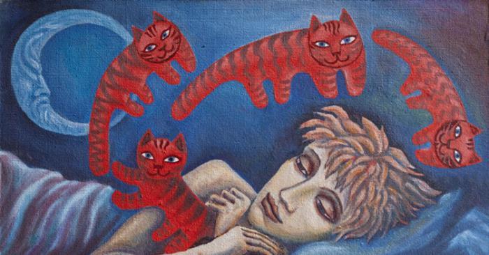 Снится рыжие коты