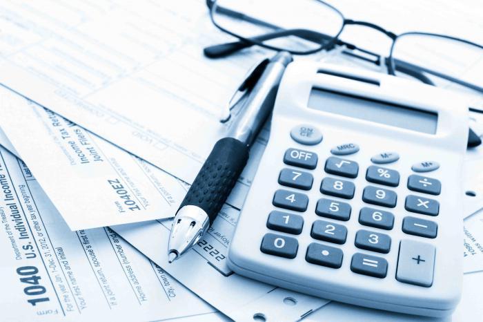 tax burden level