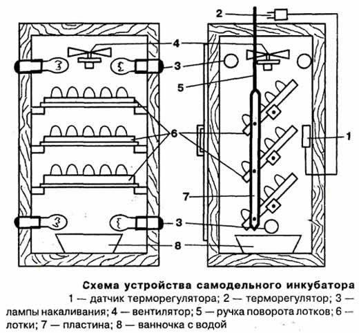схема инкубаторов самодельный