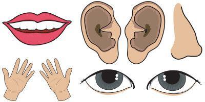 Как подчеркнуть части речи
