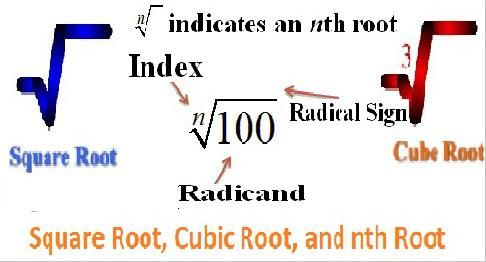 square and cubic roots