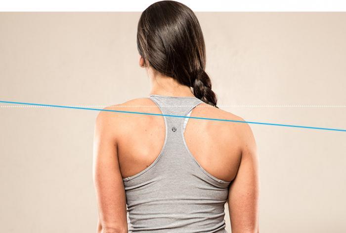 Болит область грудного отдела позвоночника