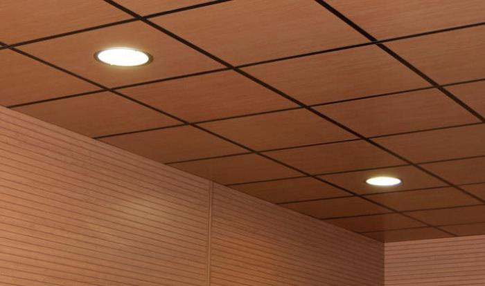 suspended ceiling plastic panels do it yourself