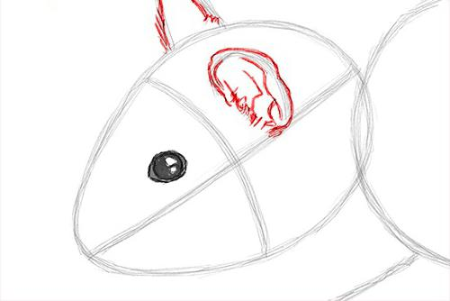 how to draw a hamster with a pencil