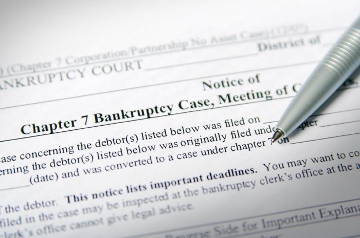Банкротство ИП: порядок, процедура, последствия