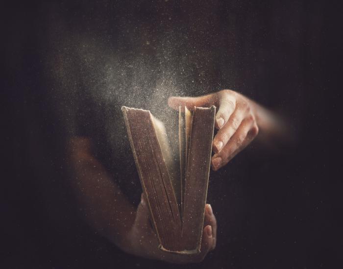 dream book stole a suitcase