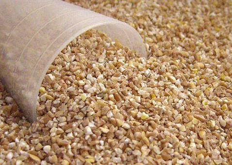 Barley grain from what