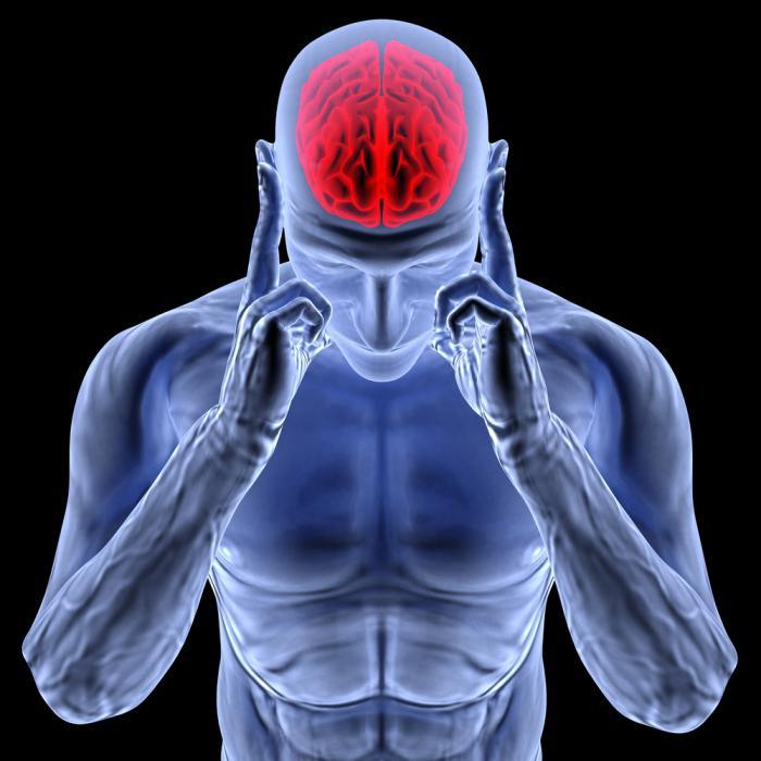 Каждый день болит голова в области