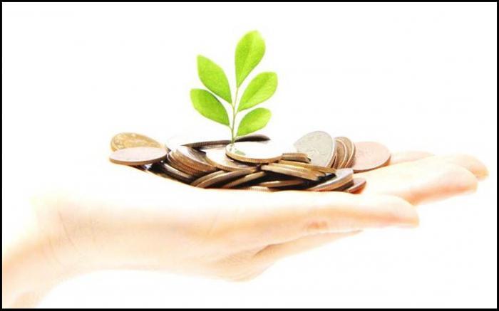источники формирования капитала: