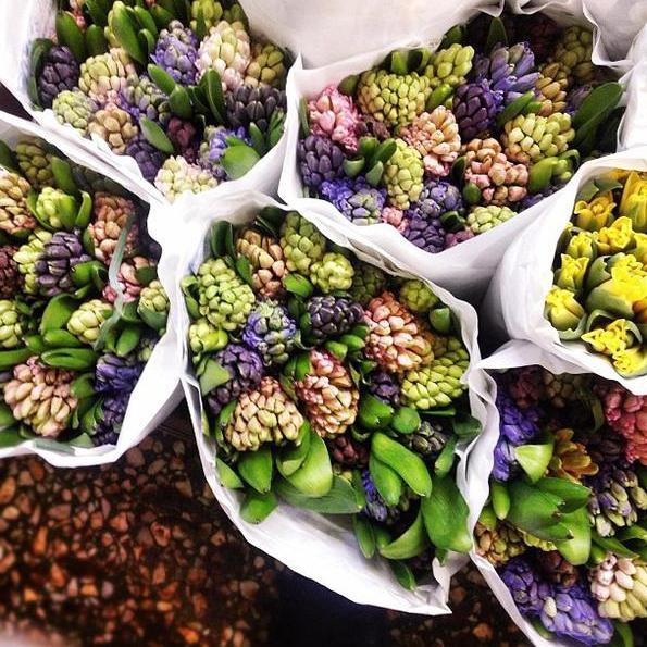 Цветы на рижском рынке цены