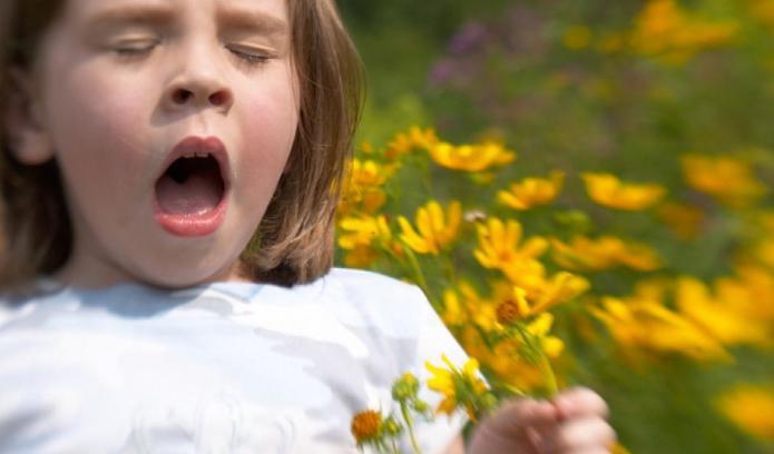 анализы на аллергены воронеж