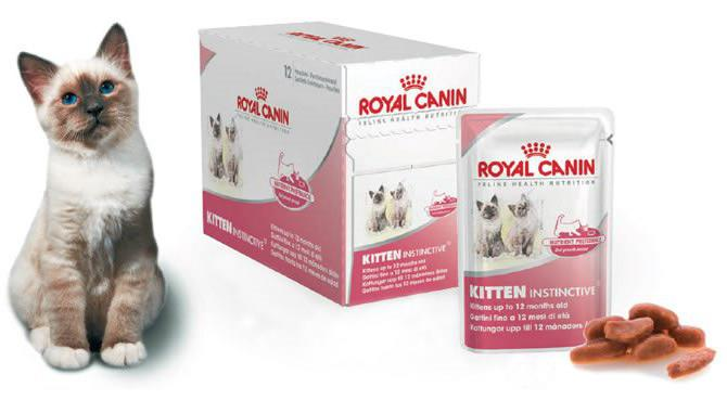 royal canin for kittens reviews