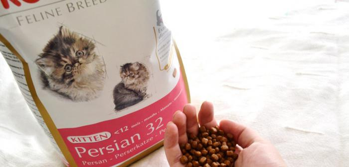 royal canin for cats reviews