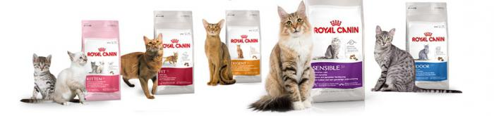 royal canin for dogs reviews