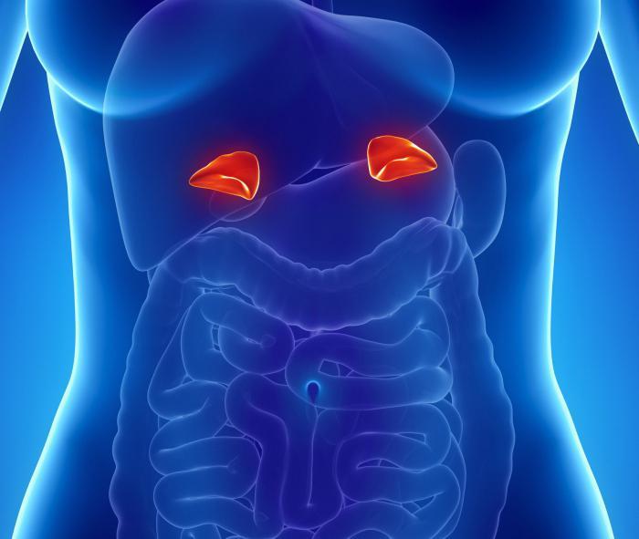 феохромоцитома у детей симптомы