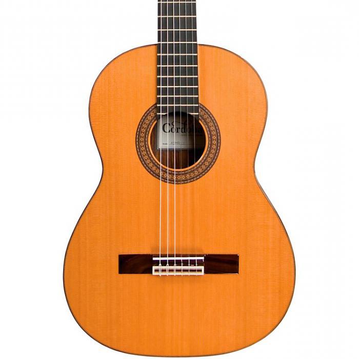 Как научится играть на гитаре