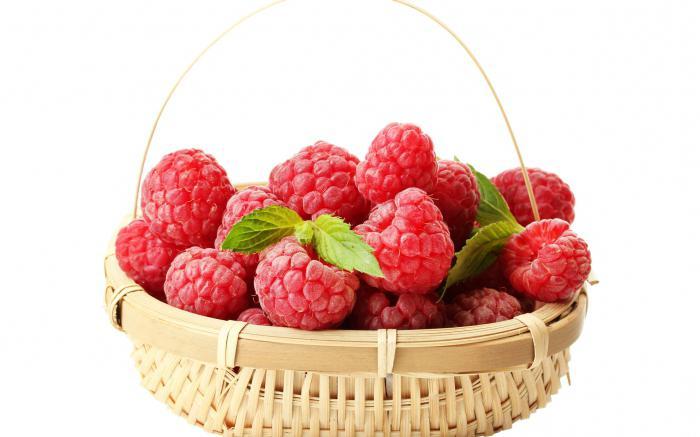 raspberry description