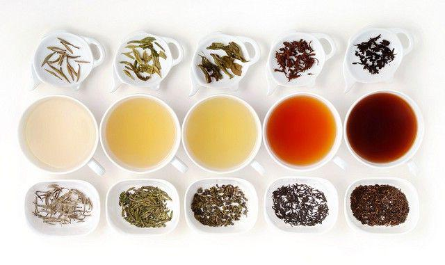 Tea varieties and types