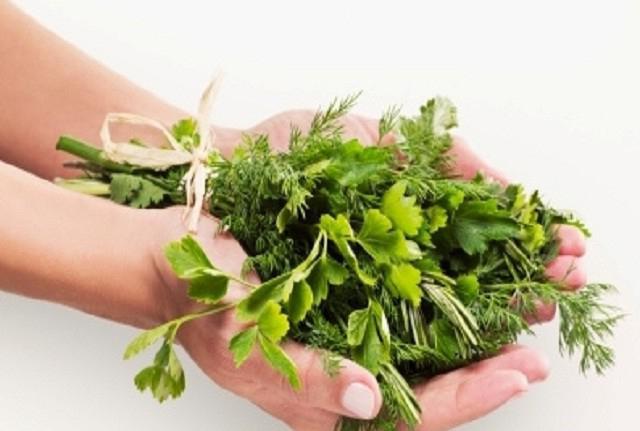 травы очищающие организм от паразитов